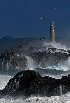 Ocean Night Song