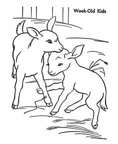 G For Goat Coloring Page For Kids  Would Be Great Embroidered #goatvet |  Goats, Goats, Goats! | Pinterest | Goats, Embroidery And Craft