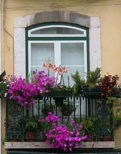 Janela Florida, Lisboa