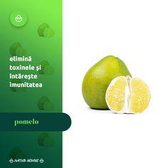 Deși face parte din categoria citricelor, #pomelo are un gust mai dulce, fiind adesea preferat în locul grapefruitului. Un sfert de pomelo poate oferi doza zilnică recomandată de vitamina C, precum și minerale benefice pentru sănătate. Pomelo ajută la prevenirea infecțiilor urinare, elimină toxinele din organism și întărește sistemul imunitar, fiind un remediu ideal în cazul infecțiilor bacteriene și virale. Natur House, Healthy Tips, Grapefruit, Health Fitness, Chart, Fitness, Health And Fitness