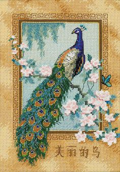 Peacock cross stitch - I have this in my room, believe it or not! :) ;) ;) ;)