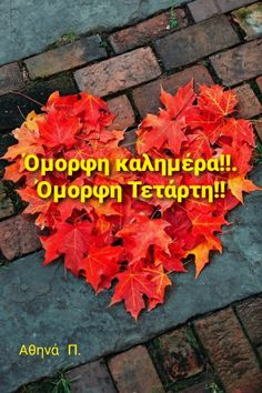 Good Morning Good Night, Good Morning Quotes, October Country, Hello October, Wonders Of The World, Cool Photos, Autumn Fall, Thursday, Seasons
