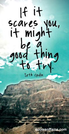 Seth Godin - If it scares you, it might be a good thing to try.