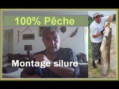 Pêche silure (technique et montage)  #montage #peche #silure
