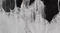 Onishi Yasuaki - vertical emptiness. Onishi Yasuaki uses tree branches, hot glue, and urea for his installation.  He uses the glue to connec...