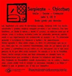 Kin Maya, Tarot, Meditation, Spirituality, Healing, Symbols, Hand Painted, Seals, Aztec Calendar