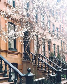 Spring weekends in New York City are for strolls through the neighborhood.