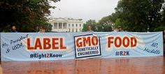 Consumers Are Smart Enough To Handle GMO Labeling » Greener Ideal