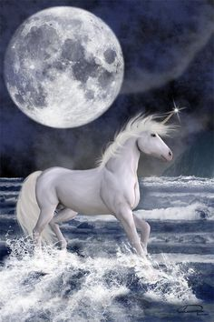 I just can't get enough of these unicorns. Look at how his horn glistens in the moonlight and how the moon is the size of THE FREAKING UNIVERSE