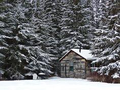 Little cabin in the woods by annkelliott, via Flickr