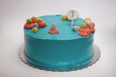 cute crazy colored cake first birthday party