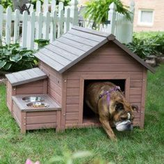 Boomer & George A-Frame Dog House with Food Bowl Tray and Storage Cubby - Large Size - Dog Houses at Dog Houses
