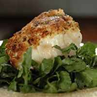 Parmesan Baked Turbot Fillets by All Fish Seafood