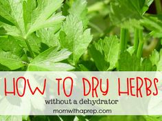 How to Dry Herbs without a Dehydrator  {Mom with a Prep}
