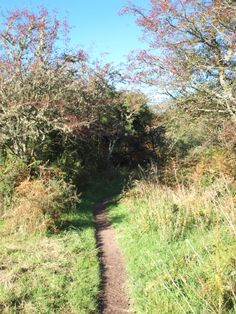 The Jubilee Path from Kippford to Rockcliffe on the Colvend Coast
