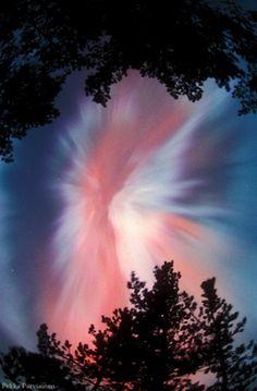 Aurora Crown. Northern lights in Finland.