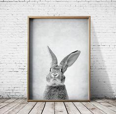 Bunny Rabbit Print  Woodlands Print  Bunny Rabbit Wall Art    Etsy