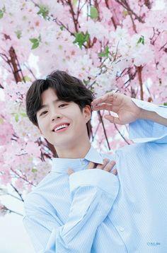 Beautiful Park Bo Gum