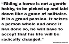 This #cool #horsequote couldn't be any truer. #QuarterHorses are the #best horses. Repin if you agree! #SageRemarks #horsesayings