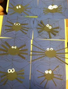1st grade? maybe do something more with the spiders?