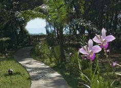 Manuel Antonio Vacation Rental - Discovery Beach House - Manuel Antonio Beachfront Luxury Vacation Villa