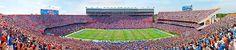 Florida Gators Football Stadium