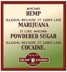 Hemp vs. Powdered Sugar
