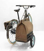 Fancy - Fremont Bike by Ziba. Collapsible side car and canvas bag.