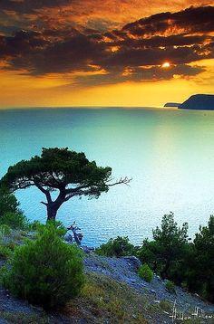 ✯ Carribean Night our honeymoon destination