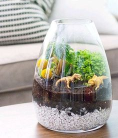 Want the best terrarium plants for your homestead? If you're looking to brighten up your home with a little greenery, then these 17 terrarium plants will give you a foundation of ideas to work from… Weekend Projects, Diy Projects, Festa Jurassic Park, Build A Terrarium, Terrarium Ideas, Terrarium Workshop, Terrarium Plants, Succulent Terrarium Diy, Terrarium Scene