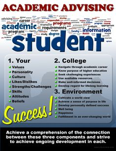 Academic Advising Infographic