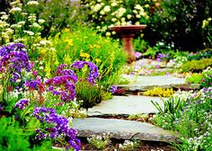 walkway path - have always loved low ground covers like Irish moss. Garden Oasis, Herb Garden, Garden Path, Rustic Gardens, Outdoor Gardens, Amazing Gardens, Beautiful Gardens, Flagstone Path, My Secret Garden