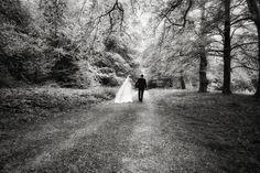 The couple walking in the woods Wedding Advice, Post Wedding, Fall Wedding, Ireland Wedding, Irish Wedding, Christmas Day Celebration, Wedding Planner, Destination Wedding, Ashford Castle
