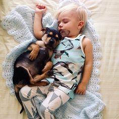 + Fotografia :   Que tal descansar um pouco?  Foto de Jessica Shyba.
