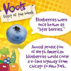 Fun facts on #blueberries, the Voots® Fruit of the Week!