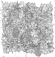 Free coloring page / William Morris ウィリアム・モリスの塗り絵① | Art,etc.