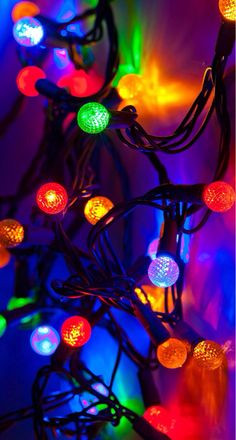 Christmas Lights ... Like these lights but don't know what they are?  We do!  They are LED G12 String Lights Sets!  You're welcome ;-) http://www.partylights.com/LED/LED-G12-String-Lights