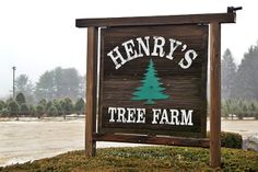 Henry's Christmas Tree Farm - where we got engaged.