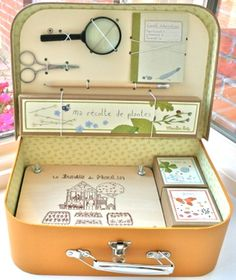Nature study in a box for kids