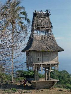 Traditional Fatuluku house of East Timor with its high pitched roof (needs repair) in the village of Mehara, near Tutuala at the very far east of Timor Leste.
