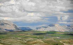 Campo de La Cumbre por Doña Juana y Las Yeguas con La Sierra de María y La Muela al fondo.