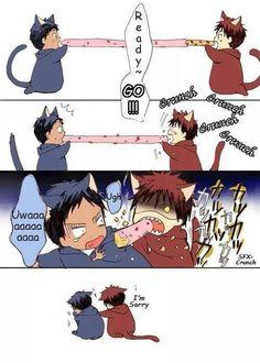 Aomine and Kagami - cat chibi ^^