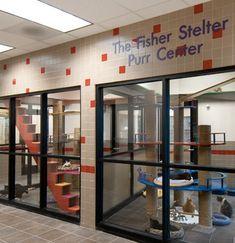The Purr Center - Cat Adoption Suites at the Animal Rescue League of Iowa - Architect: Animal Arts Design Studios