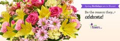 1800flowers coupon visa