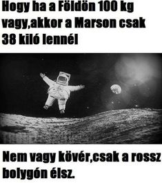 G-Mail :: Úgy gondoljuk, tetszenének neked ezek a pinek Really Funny, Funny Cute, Funny Fails, Funny Jokes, Me Too Meme, Wholesome Memes, Funny Moments, Funny Photos, Puns