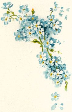 Forget me nots..love these! esainty