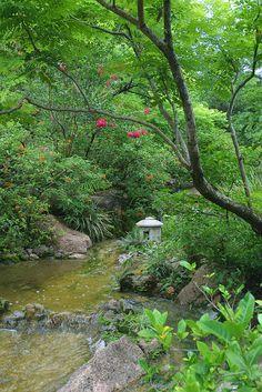 Modern Romantic Garden at the Morikami Museum