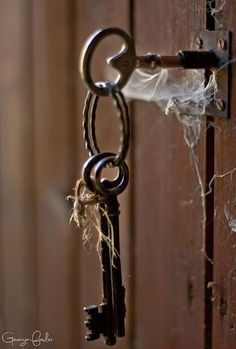 keys wrapped in time and cobwebs....held together with rusted metal and twine.  what a story they could tell.