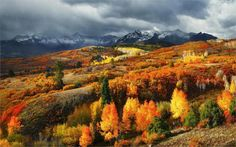 Paisajes de la naturaleza Caen Bosques Montañas Nevada Colorado Para Picos de…