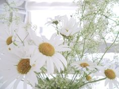 White and Shabby: MY COUNTRY HOME